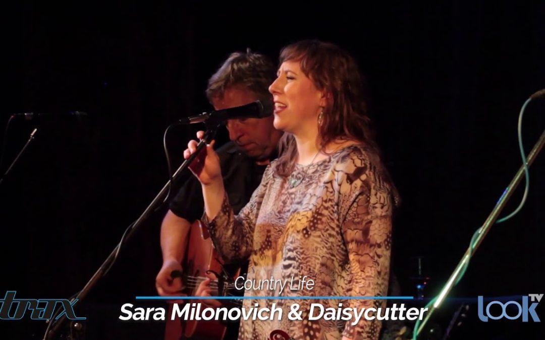 Sara Milonovich & Daisycutter, Dan Berggren, E.R.I.E., Sydney Worthley